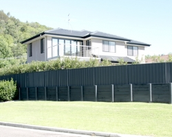 retaining_wall_and_fencing_with_plants